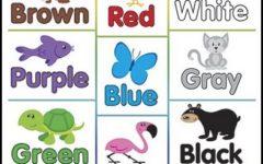 Desenhos para Colorir com Cores em Inglês Para Imprimir