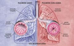 Conheça os Sintomas e Tratamento da Bronquite Asmática
